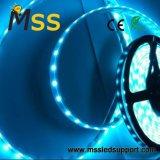 Vida longa e alta luminosidade DC12V / 24V 5050 Faixa de LED SMD