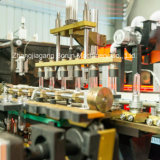 Leveranciers van de Machine van de Fles van de hoge snelheid de Volledige Automatische Plastic Blazende