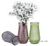 Ваза сразу поставкы фабрики стеклянная/цветастая ваза/домашнее украшение
