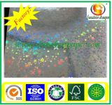 Glitter multicolor para cartón de papel Cartulina