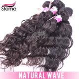 Sales Accept Paypal를 위한 도매 5A Virgin 브라질 Hair Natural Wave
