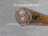 0.6/1kv câble rond concentrique du câble 2*6AWG+6AWG Copper/XLPE/PVC