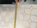 Azulejos del techo de la tarjeta/del yeso del techo del yeso del PVC