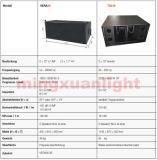 """AudioVera36 verdoppeln 10 """" Zeile Reihen-Lautsprecher-System"""