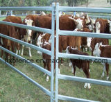 Het gemakkelijk Geassembleerde Hete Ondergedompelde Gegalvaniseerde Comité van de Werf van het Paard/van het Vee