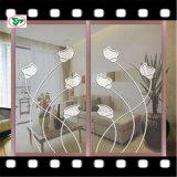 espejo de plata y de aluminio de 2mm-10m m de la seguridad