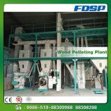 Pianta di legno della pallina di bioenergia con il certificato del CE