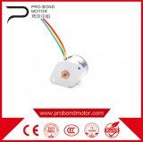 Hot China DC Step Magnet Pm Micro Motor