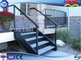 Escalera exterior práctico para el dormitorio/Edificio Industrial