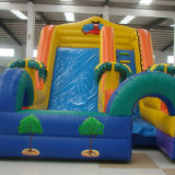 Diapositiva inflable con piscina