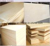 madera contrachapada de 10m m con pegamento de la base E2 del álamo a la India