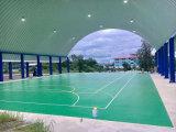 O PVC ao ar livre da alta qualidade do certificado de Bwf ostenta o revestimento usado à corte de Badminton 6.0mm