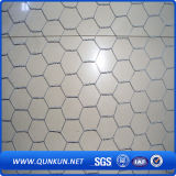 고품질 6각형 철망사 제조자