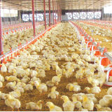 La volaille automatique contrôlent le matériel de cloche pour la cloche de poulet