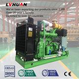 Gás natural de produção de eletricidade de Eco/gerador do biogás/biomassa