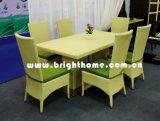 Meubles de jardin/chaise et Tableau /Outdoor de diner dinant l'ensemble