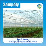 Venta caliente Plástico Mulit Span de efecto invernadero agrícola
