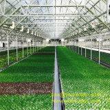 Serre chaude avancée de fleur et de légume avec le système de refroidissement et les panneaux solaires