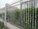 중국제 검술하는 358 높은 안전