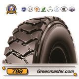 모든 강철 광선 트럭 타이어 10.00r20