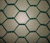 電流を通された鉄の六角形の金網