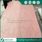 Álamo del grado de los muebles E1 E2/abedul/pino/cedro barato/madera contrachapada comercial de caoba