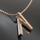 De Toebehoren van de Kleding van de Halsband van de Juwelen van het Roestvrij staal van de tegenhanger van de manier