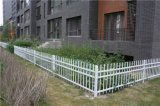 Clôture en acier personnalisée de garantie résidentielle de jardin