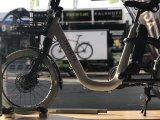 ママのためのTsinovaの新製品の電気バイク
