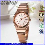 Relógio da mulher de quartzo do aço inoxidável da liga OEM/ODM da forma (Wy-104A)