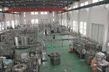 500L-20000L de Installatie van de Behandeling van het Water van het Water van het afval RO voor Drinkwater