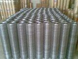 Rete fissa saldata galvanizzata ricoperta PVC della rete metallica dei 10 calibri