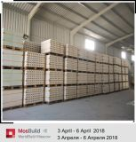 lijn van de Productie van het Blok van Gips 100 000 Sqm de Holle Stevige