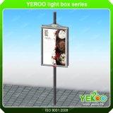 Caixa leve ao ar livre de pólo da lâmpada de rua do Signage de Adverising