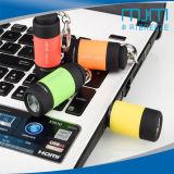 Indicatore luminoso ricaricabile della torcia del USB LED con Keychain mini LED