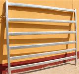 Comitati rotondi durevoli galvanizzati tuffati caldi del bestiame del tubo del metallo