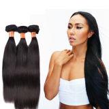 海外卸し売りカラー1b# 10-26inch 100%未加工インドの人間の毛髪の束Jyf-011