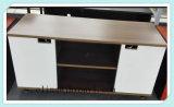 거실 가구 (16773)를 위한 대중적인 움직일 수 있는 파일 캐비넷