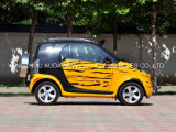Het hete Voertuig van de Auto van de Verkoop Kleine Elektrische voor 2 Seaters