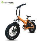 前部キャリアが付いているセリウムの公認の安い電気自転車の電気バイク