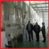 120T/D Projet de traitement modernes de riz