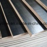 La madera contrachapada marina de la base de la madera dura/la madera contrachapada/la película Shuttering hicieron frente a la madera contrachapada para la construcción