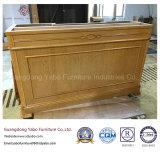 Hotel-Möbel für Aufenthaltsraum-Vorhalle-Abfertigungs-Kostenzähler (YB-AE-1)