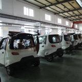 運転免許証のない流行の安く純粋な電気供給の小型手段