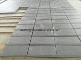 Graniet het Van uitstekende kwaliteit van de Fabrikant van China voor de Tegel/de Muur/de Treden van de Vloer