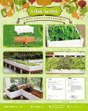 Plantadeira vegetais empilháveis com Flower Garden Pot Cama Jardim Levantada