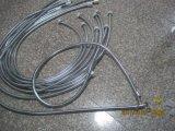 목욕탕 꼭지, EPDM 의 금관 악기 견과, 1.5m 길이를 위한 스테인리스 샤워 호스