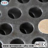Frontière de sécurité décorative de feuille en métal d'élément perforé de maille