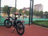 """Ville légère de la CE 20 """" pliant le vélo électrique avec la batterie au lithium"""