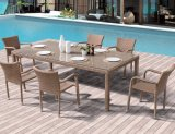 خارجيّ [ويكر] فناء يتعشّى حديقة بينيّة فندق مكتب [رتّن] كرسي تثبيت وطاولة ([ج374بر])